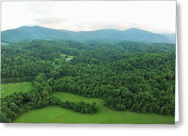 Virginia Pyrography Greeting Cards - 50 Shades of Green Greeting Card by Adam Holland