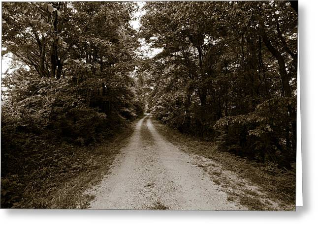 Natchez Trail Greeting Card by Avril Christophe