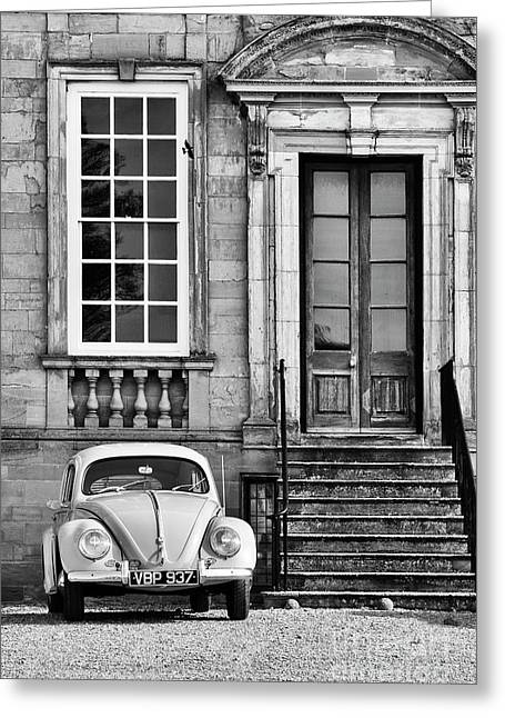 56 Beetle Greeting Card by Tim Gainey