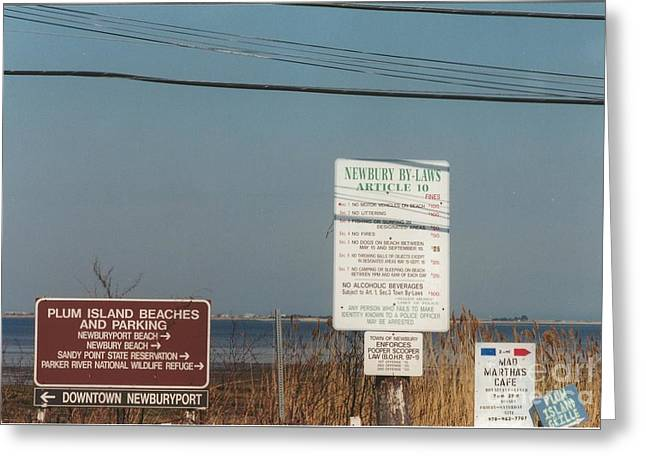 Nature Study Greeting Cards - #585 24 Plum Island Signs Marsh Grass Greeting Card by Robin Lee Mccarthy Photography