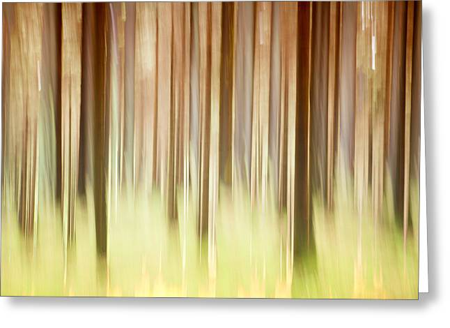Abstractions Greeting Cards - Abstract forest Greeting Card by Heinz Dieter Falkenstein