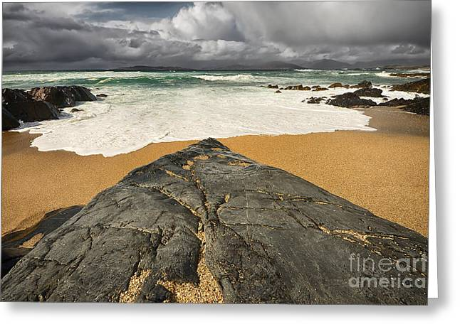 Scarista Greeting Card by Stephen Smith