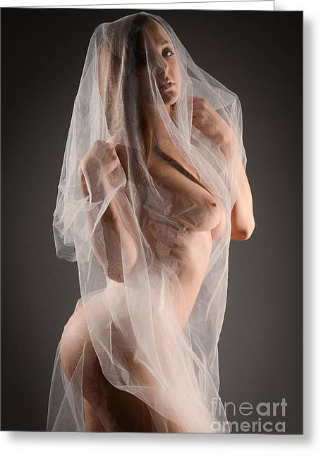 Orgasm Greeting Cards - Sheer Nude Art Greeting Card by Jt PhotoDesign