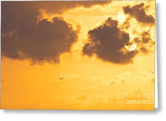 The North Greeting Cards - Sunset Greeting Card by Angela Doelling AD DESIGN Photo and PhotoArt