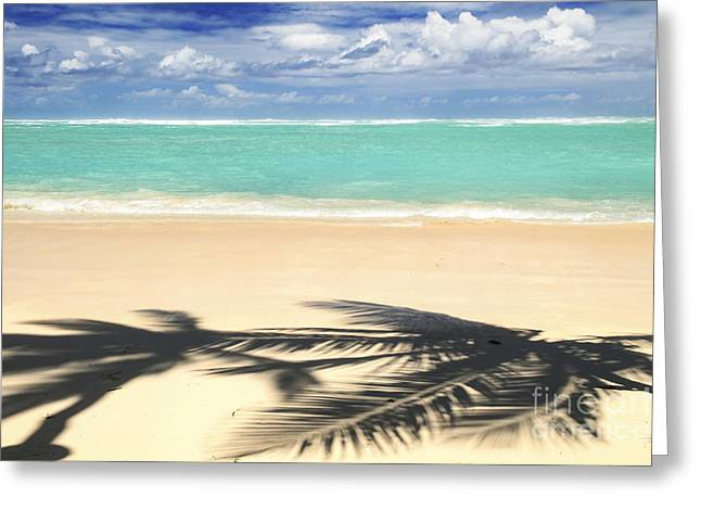 Beach White Greeting Cards - Tropical beach Greeting Card by Elena Elisseeva