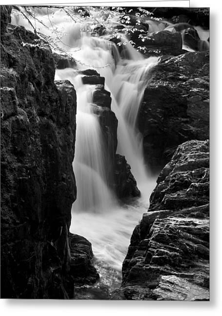Waterfall Greeting Card by Svetlana Sewell