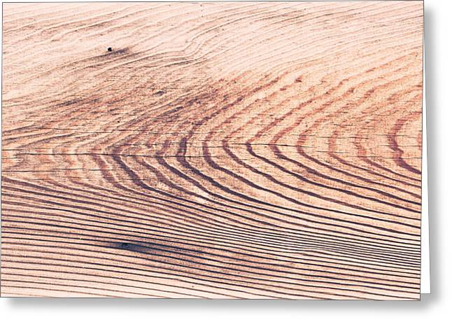 Border Photographs Greeting Cards - Wood texture Greeting Card by Tom Gowanlock