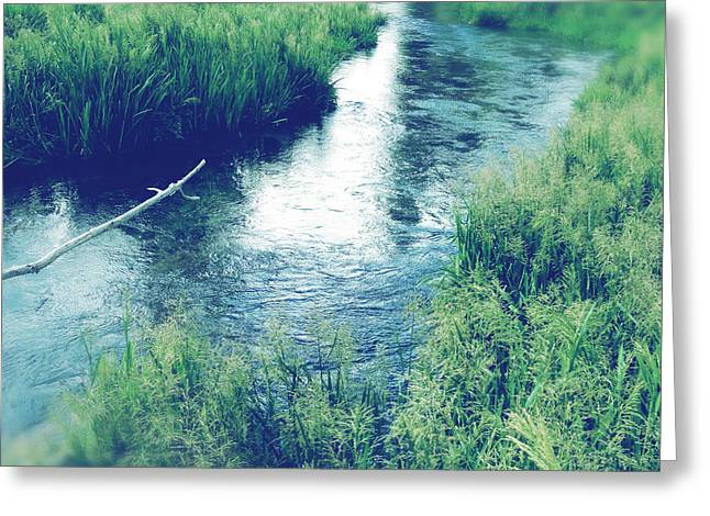 Brook Photographs Greeting Cards - Spring water Greeting Card by Les Cunliffe