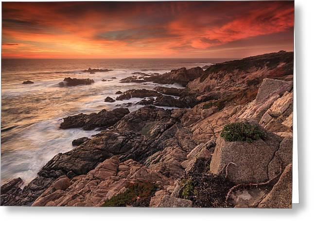 Big Sur, California Greeting Card by Thad Brown