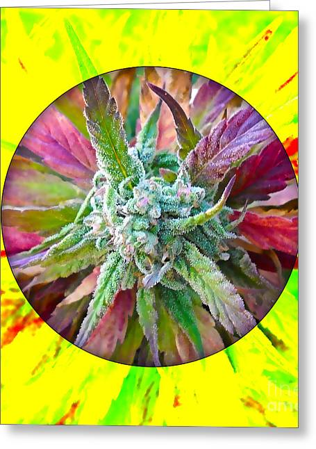 Weed Greeting Cards - Cannabis 420 Collection Greeting Card by Marvin Blaine