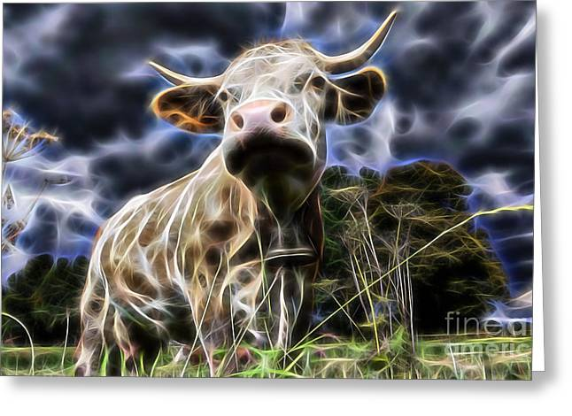 Cow  Greeting Card by Marvin Blaine