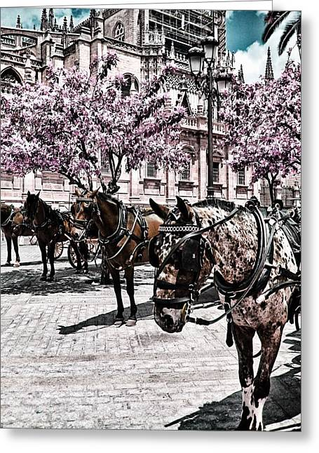 Buggy Whip Greeting Cards - Ernest Hemingway Greeting Card by JAMART Photography