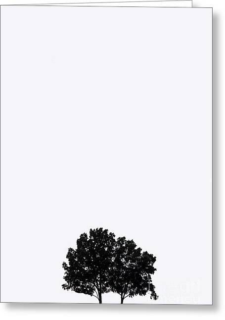 Black 7 White Greeting Cards - 7 Years Greeting Card by Amanda Barcon