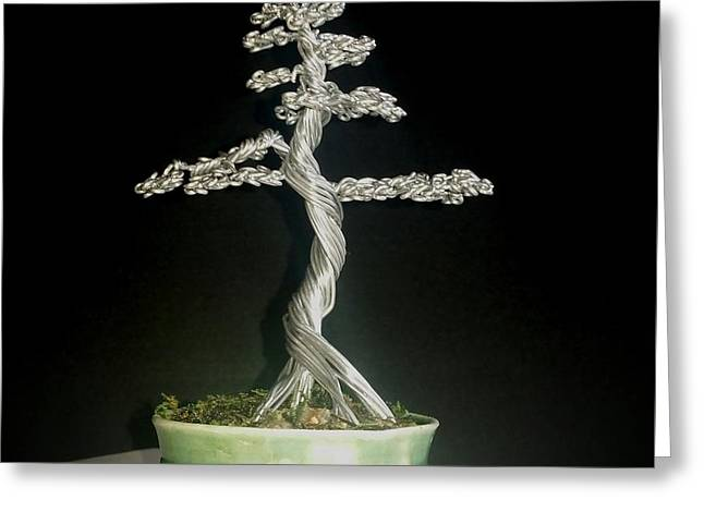 Etc. Sculptures Greeting Cards - #72 Mig wire Tree sculpture in Marianne Thomasson pot Greeting Card by Ricks  Tree Art