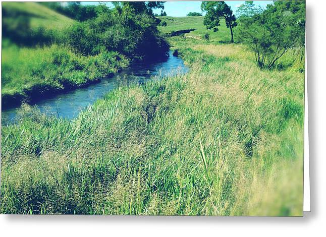 Brook Greeting Cards - Spring water Greeting Card by Les Cunliffe