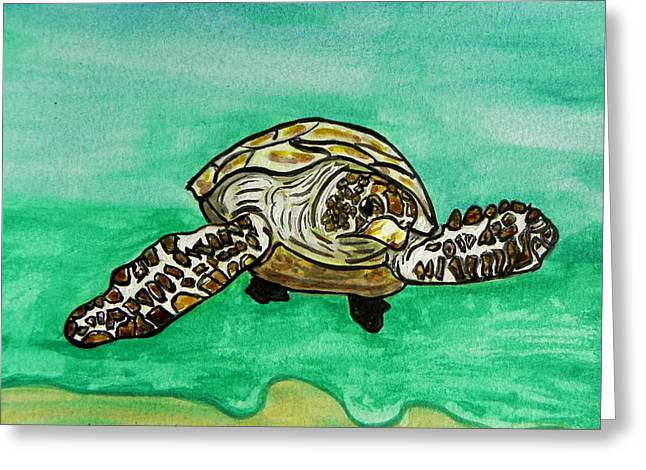 Beach Photographs Paintings Greeting Cards - Sea Turtle Greeting Card by W Gilroy