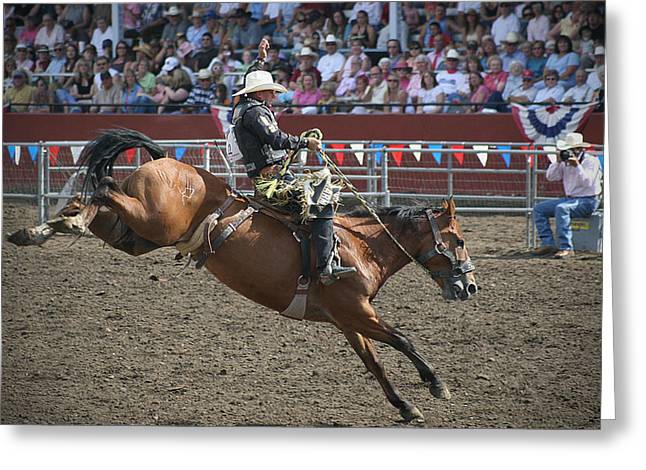 Bronc Greeting Cards - 8 Second Ride Greeting Card by Melisa Meyers