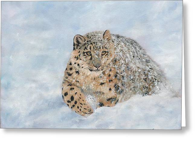 Snow Print Greeting Cards - Snow Leopard Greeting Card by David Stribbling