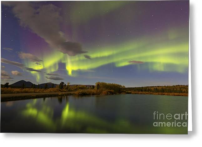 Reflections Of Sky In Water Greeting Cards - Aurora Borealis With Moonlight At Fish Greeting Card by Joseph Bradley