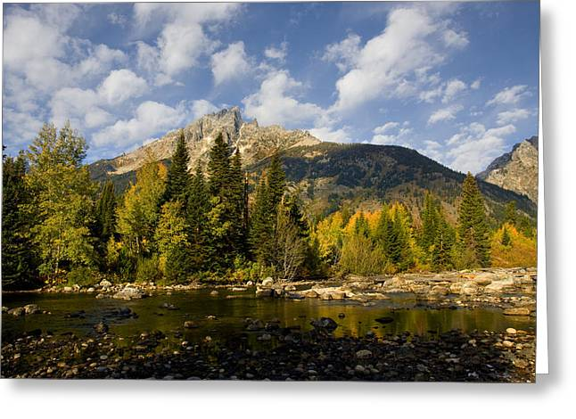 Autum Greeting Cards - Grand Teton National Park Greeting Card by Mark Smith