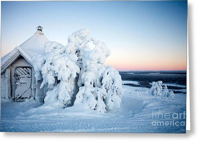 Winter In Lapland Finland Greeting Card by Kati Molin