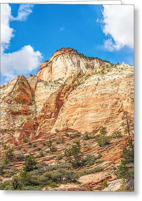 Vale Greeting Cards - Zion Canyon National Park Utah Greeting Card by Alexandr Grichenko