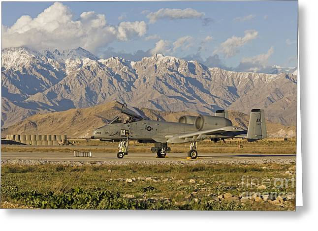 Jet Airplane Greeting Cards - A-10 Warthog at Bagram Greeting Card by Tim Grams