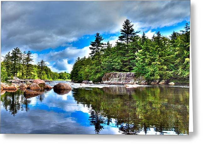 The Trees Greeting Cards - A Beautiful Summer Day on the Moose River Greeting Card by David Patterson