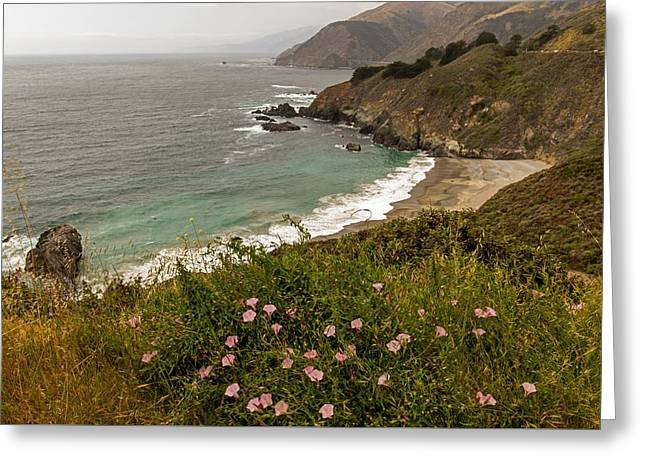 Big Sur Greeting Cards - A Beautiful View of The PCH Greeting Card by Willie Harper