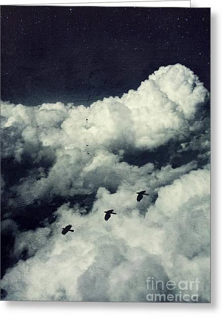 Dirk Wuestenhagen Greeting Cards - A Birds Dream Greeting Card by Dirk Wuestenhagen