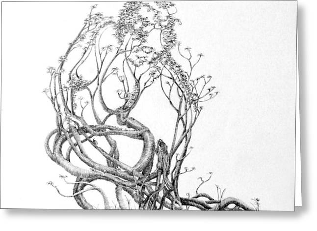 Tree Roots Drawings Greeting Cards - A Bit of News Greeting Card by Mark Johnson