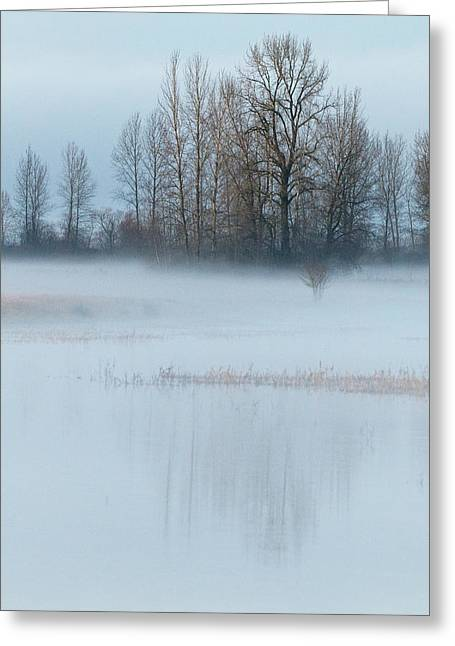A Blanket Of Fog Greeting Card by Angie Vogel