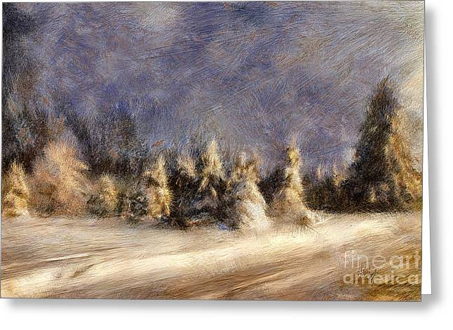 A Blizzard Of Light Greeting Card by Lois Bryan