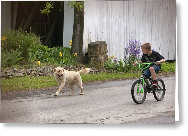 Lucky Dogs Greeting Cards - A Boy and His Dog Greeting Card by Phyllis Taylor