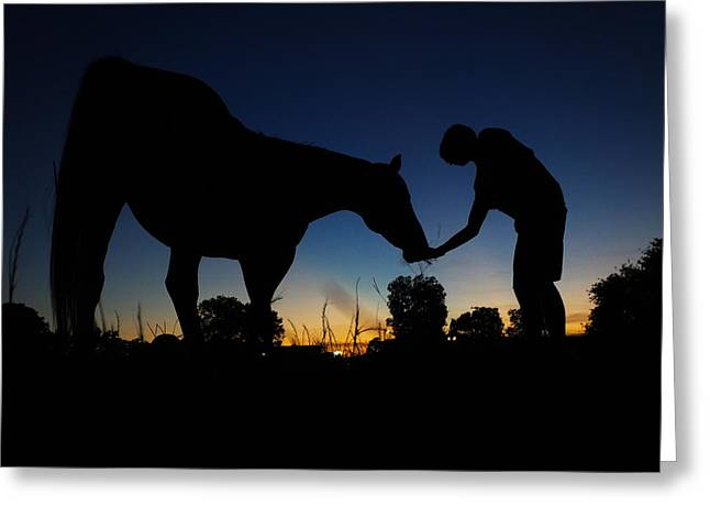 A Boy And His Horse Greeting Card by Jake Marvin