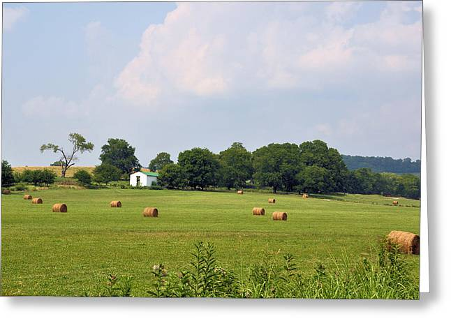 Tennessee Hay Bales Greeting Cards - A Breath Of Fresh Air Greeting Card by Jan Amiss Photography