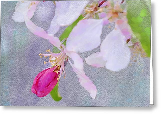 Treatment Digital Art Greeting Cards - A Breath of Spring Greeting Card by Betty LaRue