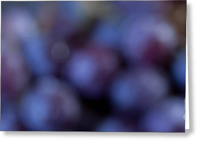 Bunch Of Grapes Greeting Cards - A Bunch of Purple Panorama Greeting Card by Patricia Bainter