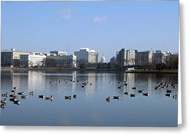 Tidal Photographs Greeting Cards - A Capital Panorama Including Jefferson Memorial Greeting Card by Cora Wandel