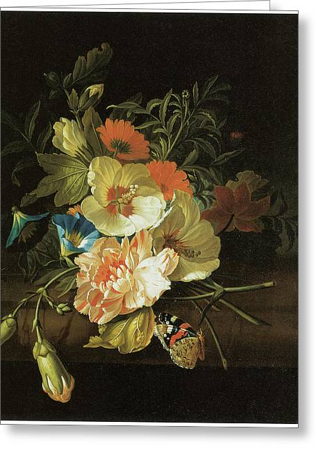Rose Of Sharon Greeting Cards - A Carnation Morning Glory with Other Flowers Greeting Card by Rachel Ruysch