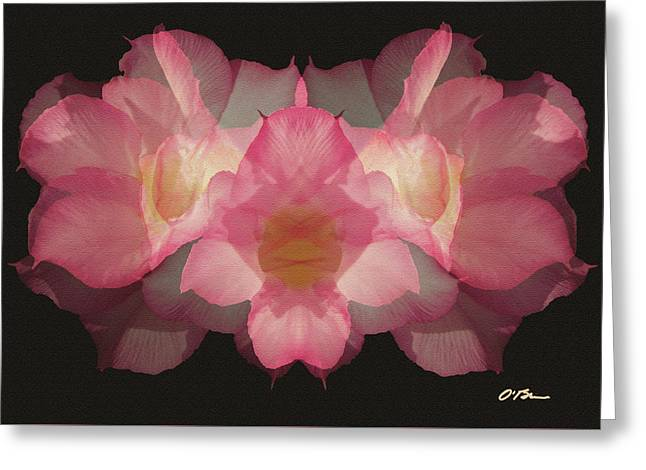 A Celebration Of Desert Roses Greeting Card by Claudia O'Brien