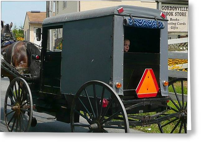 Amish Photographs Greeting Cards - A Childs Peek At Another World Greeting Card by Lori Seaman