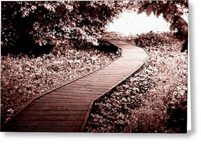 Roberto Alamino Greeting Cards - A Clear Path in the Middle of the Chaos Greeting Card by Roberto Alamino