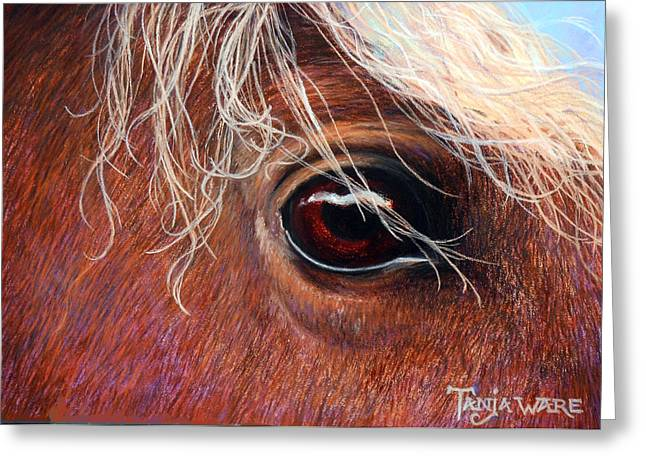 Horse Pastels Greeting Cards - A Closer Look Greeting Card by Tanja Ware