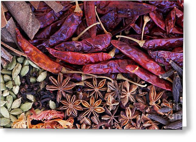 A Collection Of Spices Greeting Card by Tim Gainey