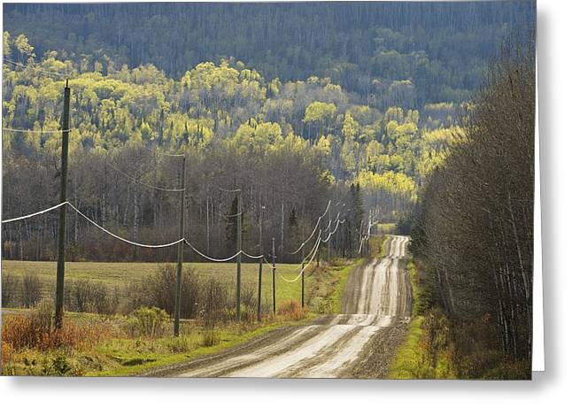 Recently Sold -  - Roadway Greeting Cards - A Country Road With Electrical Wires Greeting Card by Susan Dykstra
