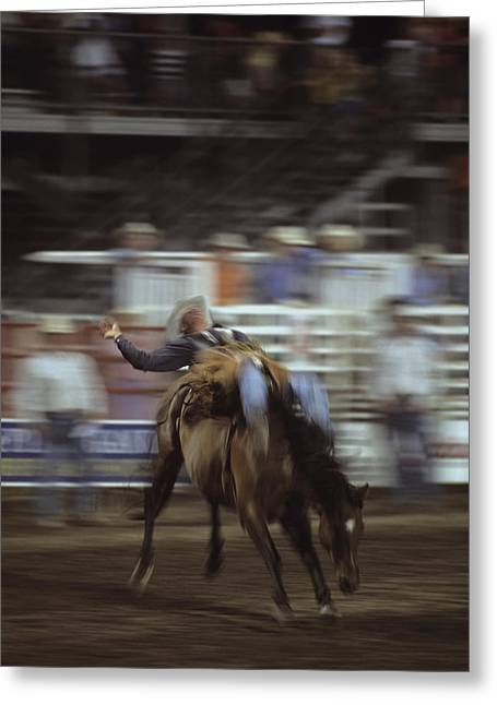 Steamboat Springs Western Greeting Cards - A Cowboy Rides A Bucking Bronco Greeting Card by Taylor S. Kennedy
