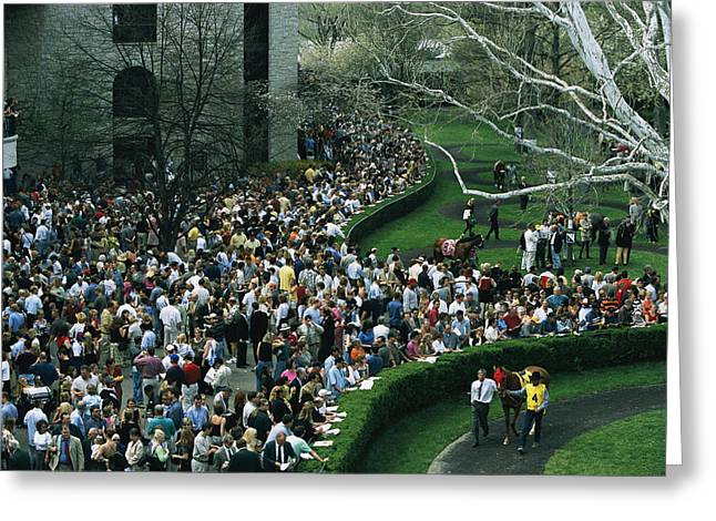 A Crowd Gathers Around Keenelands Greeting Card by Melissa Farlow