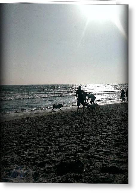 California Beaches Drawings Greeting Cards - A Day At The Dog Beach  Greeting Card by Missy  Brage