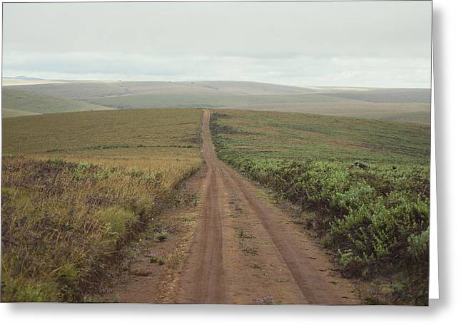 A Dirt Road Leading To The Horizon Greeting Card by Bill Curtsinger